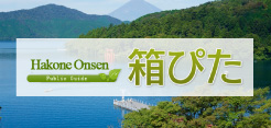 Japan Hakone Onsen,Hotels Guide [HAKOPITA]