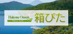 Japan Hakone Onsen,Hotels Guide [HAKOPITA]