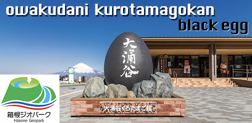 hakone black egg